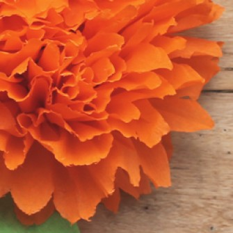 Mexican paper flowers video tutorial