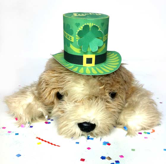 cute puppy for st patricks day dog mini printable paper hat