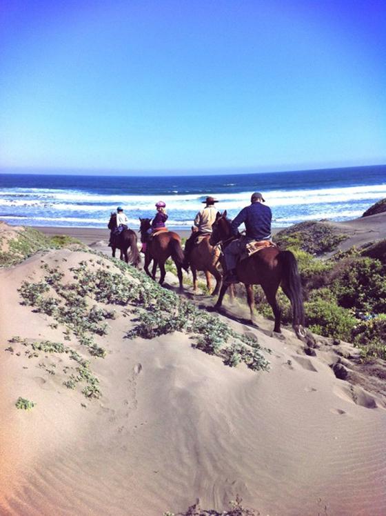 live life beach-calligraphy ritoque beach chile horseback riding