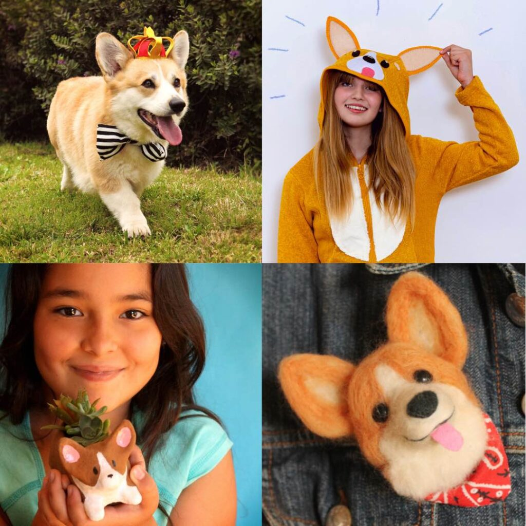 Make a DIY crown, hoody to wear, planter and broach of corgi dogs